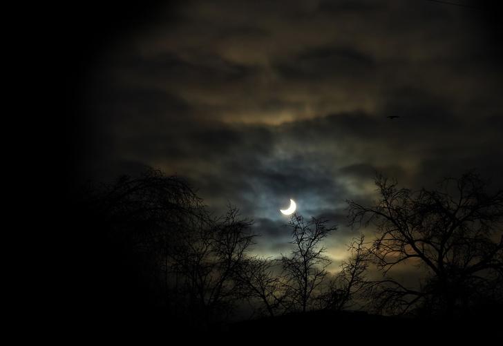 Фото №1 - Страх темноты сформировался у человека в процессе эволюции
