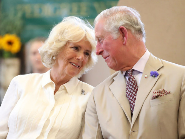 Фото №1 - Великая сила любви: как Камилла спасла принца Чарльза