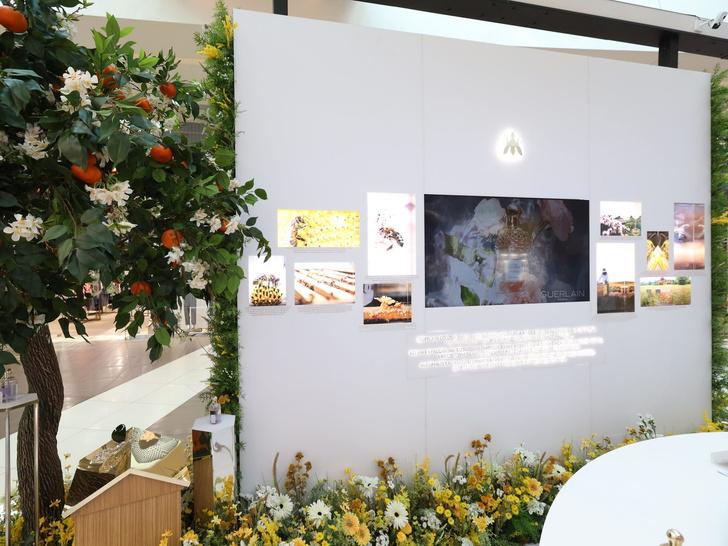 Фото №2 - «Цветущий сад пчел Guerlain»: что нужно знать о новой благотворительной кампании бренда