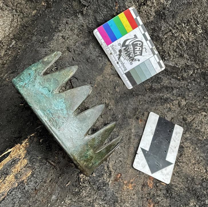 Фото №1 - В скифском захоронении в Туве найдена «корона»