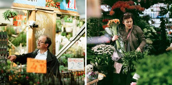 Фото №3 - Ставка на тюльпаны