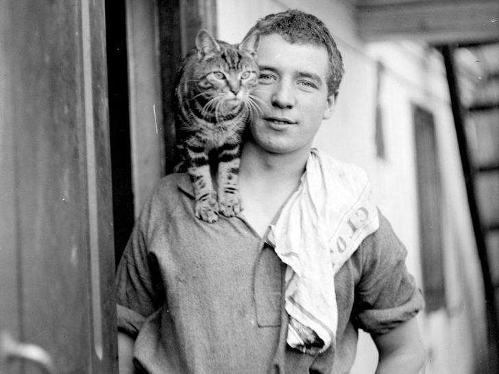 Фото №2 - Кошки, изменившие мир: 8 удивительных историй