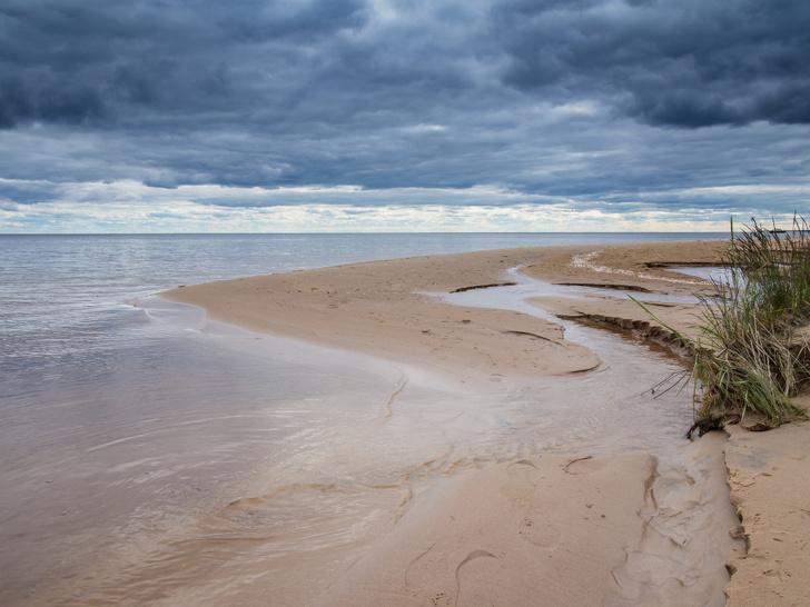 Фото №3 - Псковское чудо: 12 тайн Чудского озера