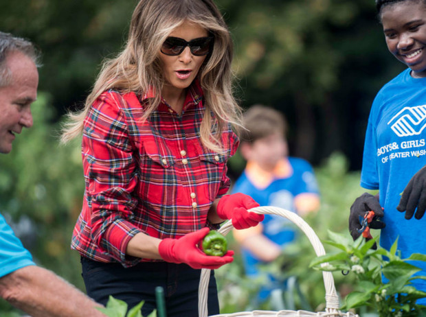 Фото №1 - Разумная умеренность: пищевые привычки Мелании Трамп