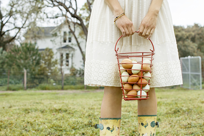 Фото №1 - 20 фактов о куриных яйцах, которые обязаны знать все хорошие хозяйки