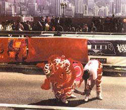 Фото №4 - «Гон хей фатт чой», или С новым годом, Гонконг!