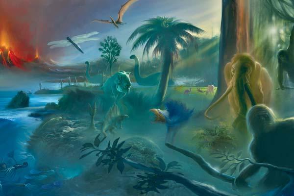 Фото №1 - Белые пятна эволюции