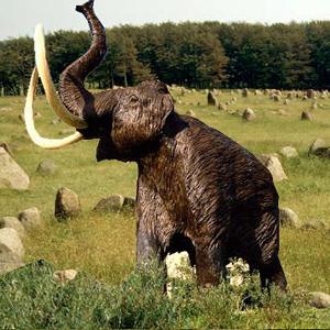 Фото №1 - Откуда пошли мамонты