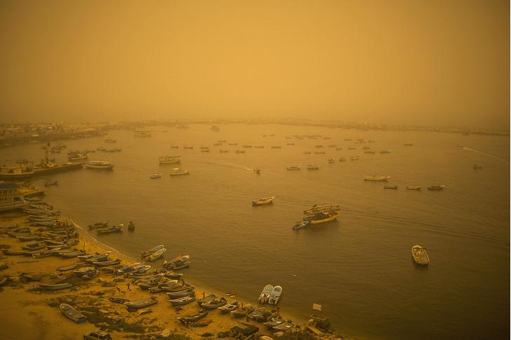 Фото №1 - Песчаная буря