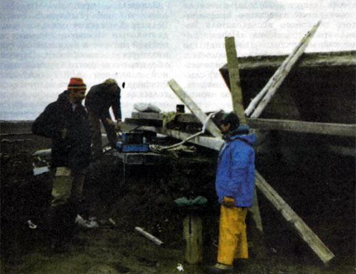 Фото №1 - Аляскинская версия