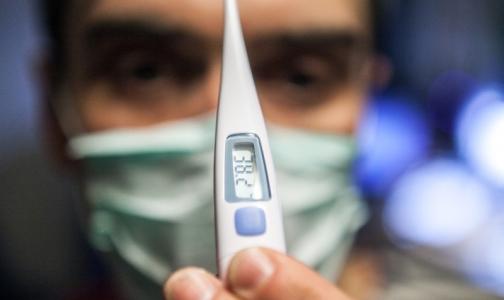 Фото №1 - Смольный подтвердил 36 смертей от гриппа