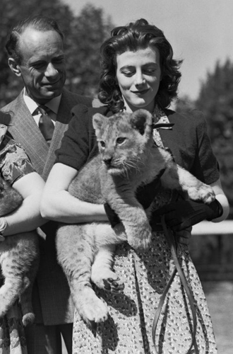 Фото №5 - Судьба четырех: любовь, мечты и трагедии дочерей Уинстона Черчилля