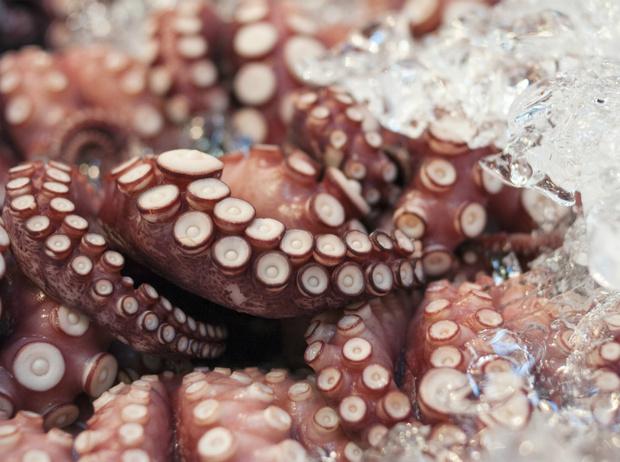 Фото №5 - Как правильно выбирать морепродукты: советы эксперта