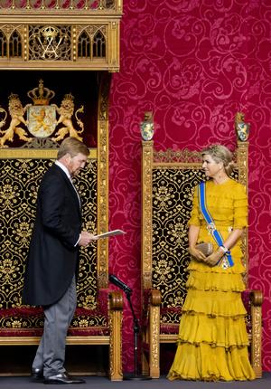 Фото №4 - Что особенного в платье Claes Iversen из гардероба нидерландской королевы Максимы и почему оно поменяло цвет?