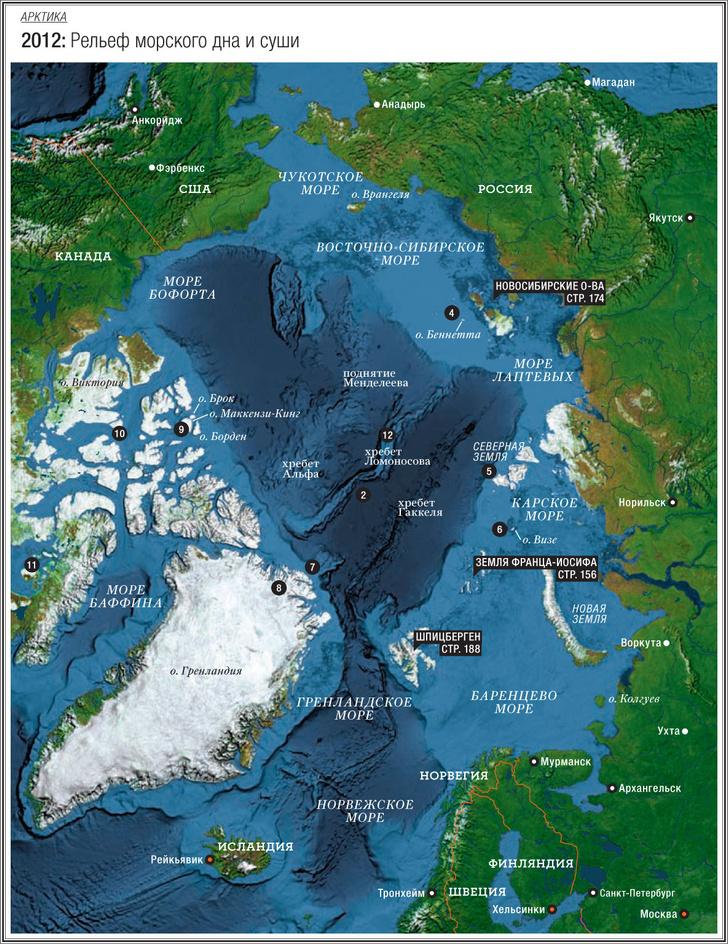 Фото №2 - Арктика