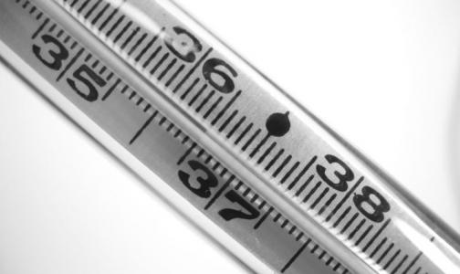 Фото №1 - Когда 36,6 — не норма: субфебрильная температура