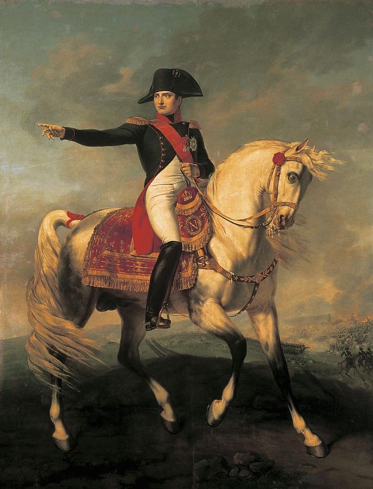Фото №4 - Невиданное дело: как француз-простолюдин занял шведский престол