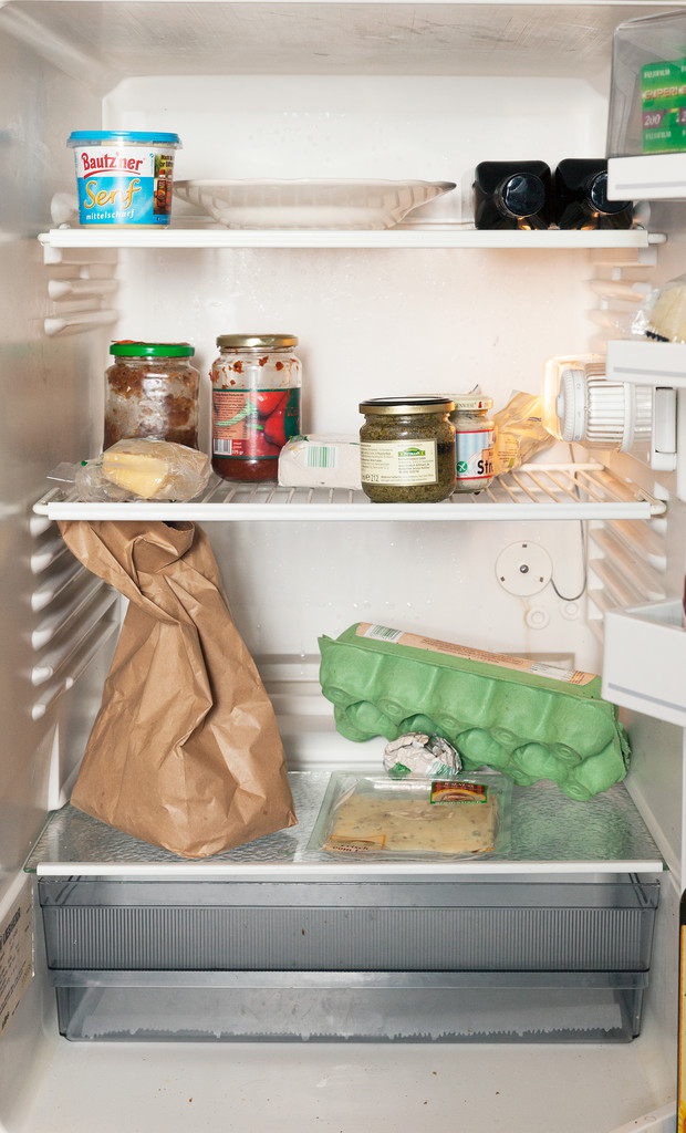 Фото №14 - Что лежит в холодильнике у жителей разных стран: 54 любознательных фото
