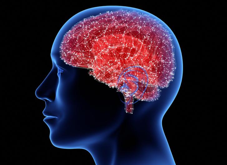 Фото №1 - Ученые обнаружили область мозга, отвечающую за религиозность