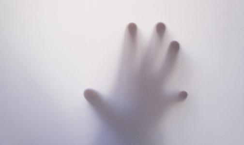 Фото №1 - Какие чувства не покидают человека до самой смерти