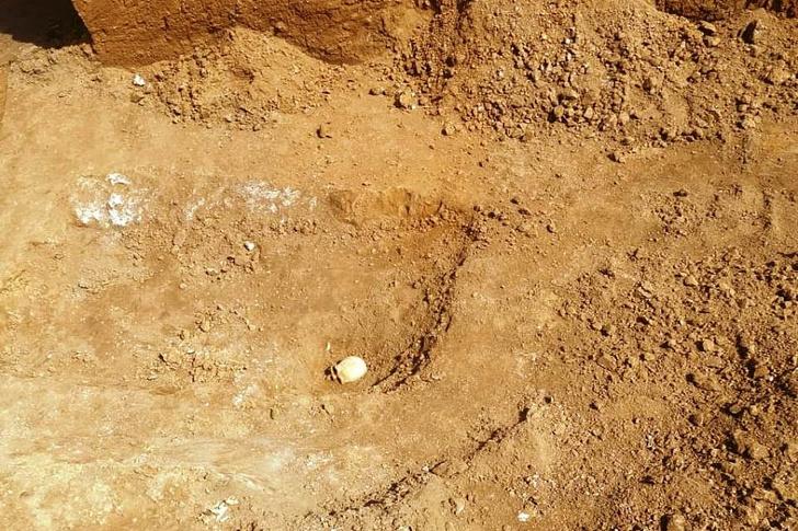 Фото №1 - На юге России найдены артефакты возрастом 4000 лет