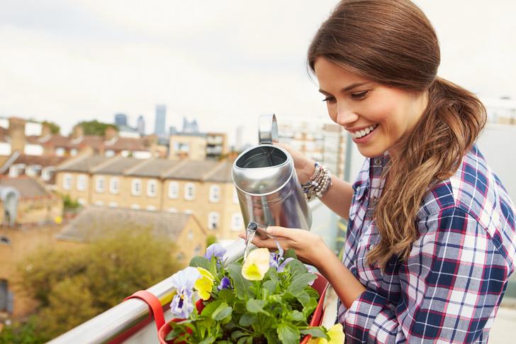 Фото №1 - Травы, овощи, цветы: как устроить мини-сад на балконе