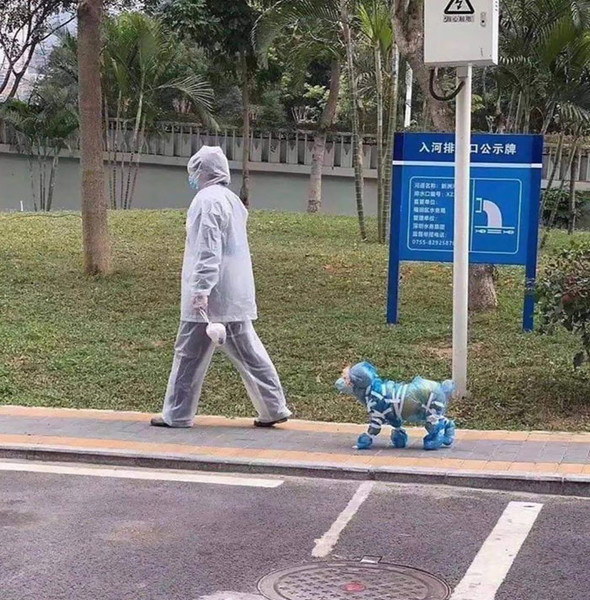 Фото №2 - Как люди ходят в магазин во время пандемии: 20 смешных фото