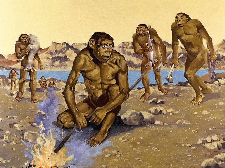 Фото №1 - Ученые выяснили, когда люди научились разводить огонь