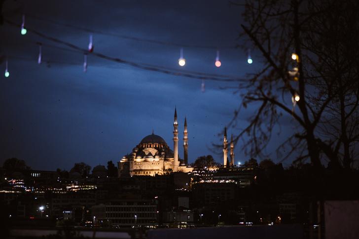 Фото №6 - Короли улиц: настоящие хозяева Стамбула