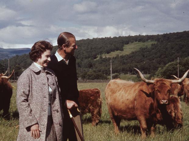 Фото №8 - Пока смерть не разлучит: почему Королева никогда не развелась бы с принцем Филиппом