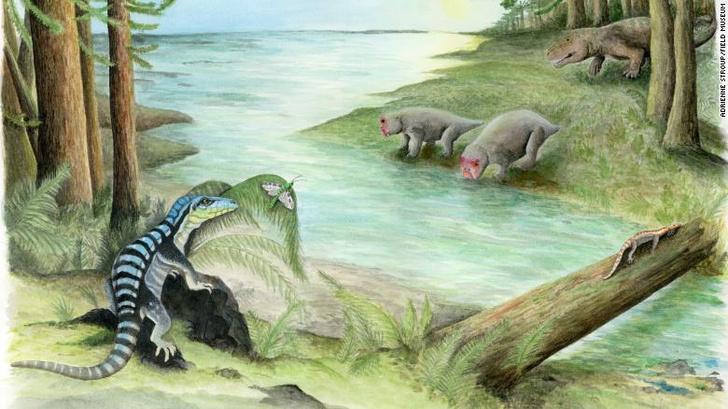 Фото №1 - В Антарктике нашли останки древней рептилии