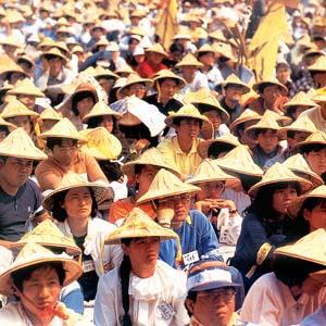 Фото №1 - Китайцы изменили фамильные пристрастия