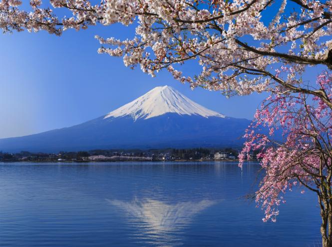 Фото №5 - Как вести себя за границей: 16 полезных советов начинающим туристам