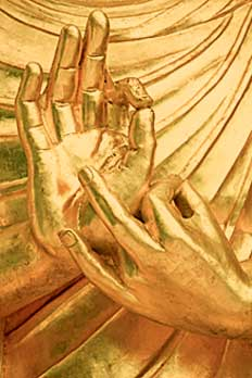 Фото №2 - Почему Будда сидит в позе лотоса?