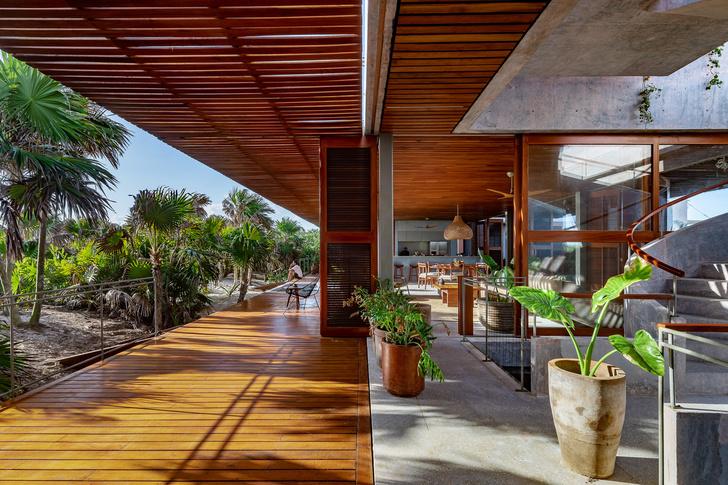 Фото №3 - Бетонный дом на побережье Карибского моря в Тулуме