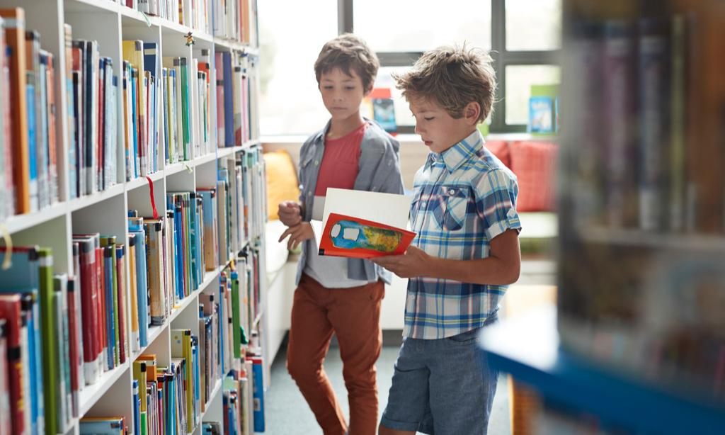 Литература вне закона: какие книги из школьной программы спрячут от детей