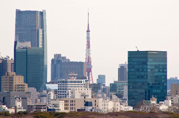 Фото №4 - Япония после катастрофы