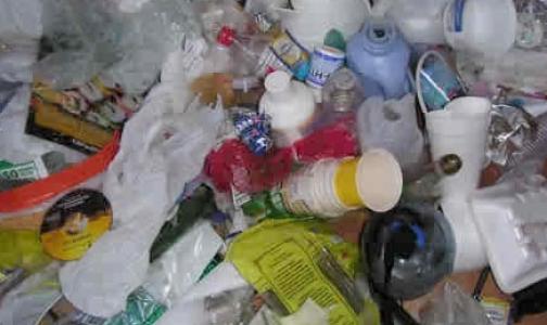 Фото №1 - ООН беспокоит количество пластиковых отходов