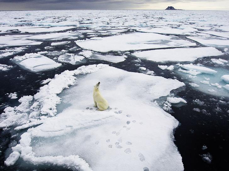 Фото №2 - Наука: на климатических фронтах