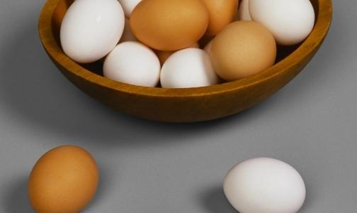 Фото №1 - В петербургских яйцах искали сальмонеллу и полезные для здоровья каротиноиды
