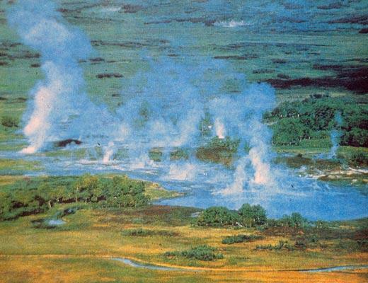 Фото №1 - Странный мир Узона