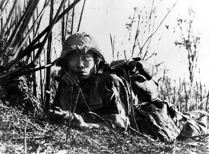 Фото №5 - «С потерей крепости придется смириться»: отрывок из книги «Вьетнам. История трагедии. 1945-1975» Макса Хейстингса