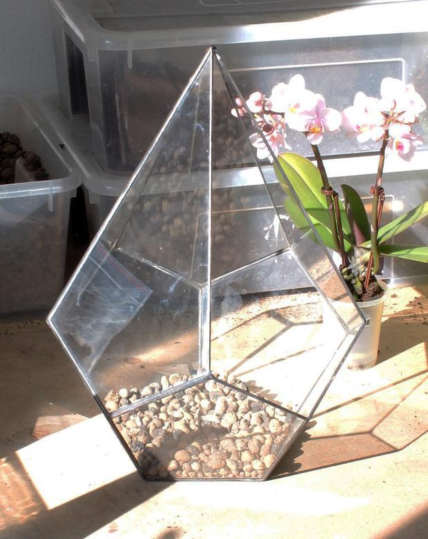 Фото №4 - Весенний флорариум с орхидеей: советы по изготовлению и уходу