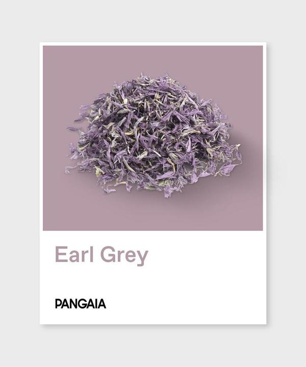 Eco-ELLE: новая коллекция любимого звездами бренда Pangaia в пастельных тонах