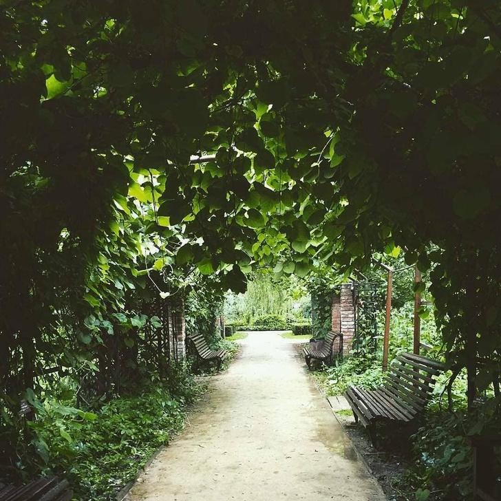 Фото №3 - Самые необычные оранжереи мира