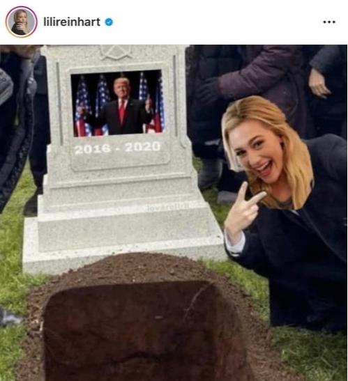 Фото №1 - Хулиганка: Лили Рейнхарт прифотошопила себя и Дональда Трампа к популярному мему