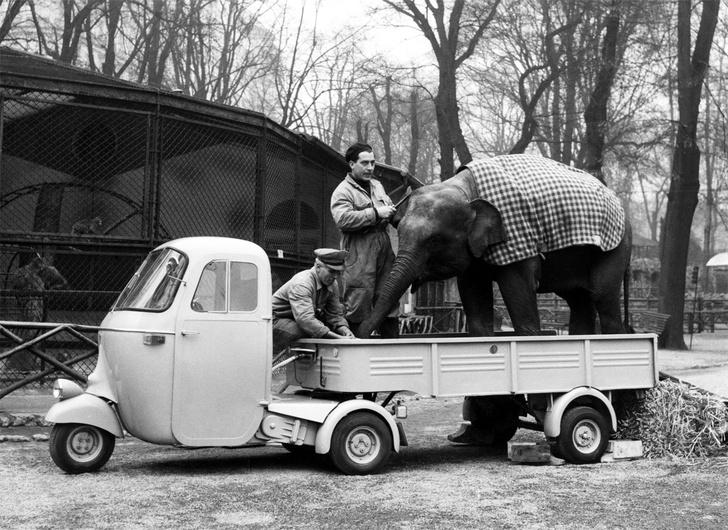Фото №10 - 10 попыток создать дешевый автомобиль