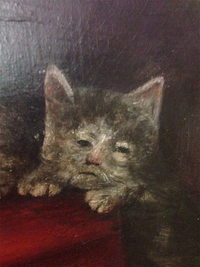Фото №10 - 20 мемных котов, похожих на известных режиссеров