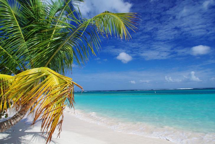 Фото №7 - 10 лучших пляжей планеты