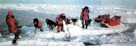 Фото №7 - Три полярных сюжета